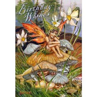 Briar Kaart Mushroom Fairy