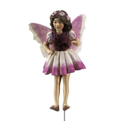Flower Fairies Sonnewende