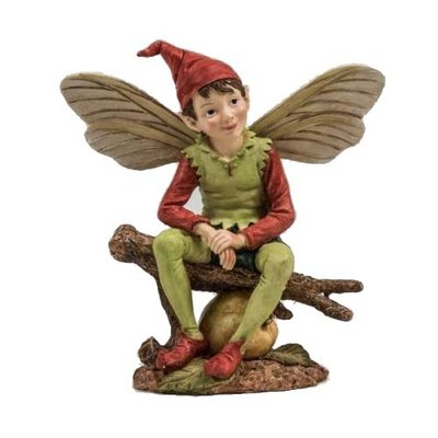 Flower Fairies Elf groot